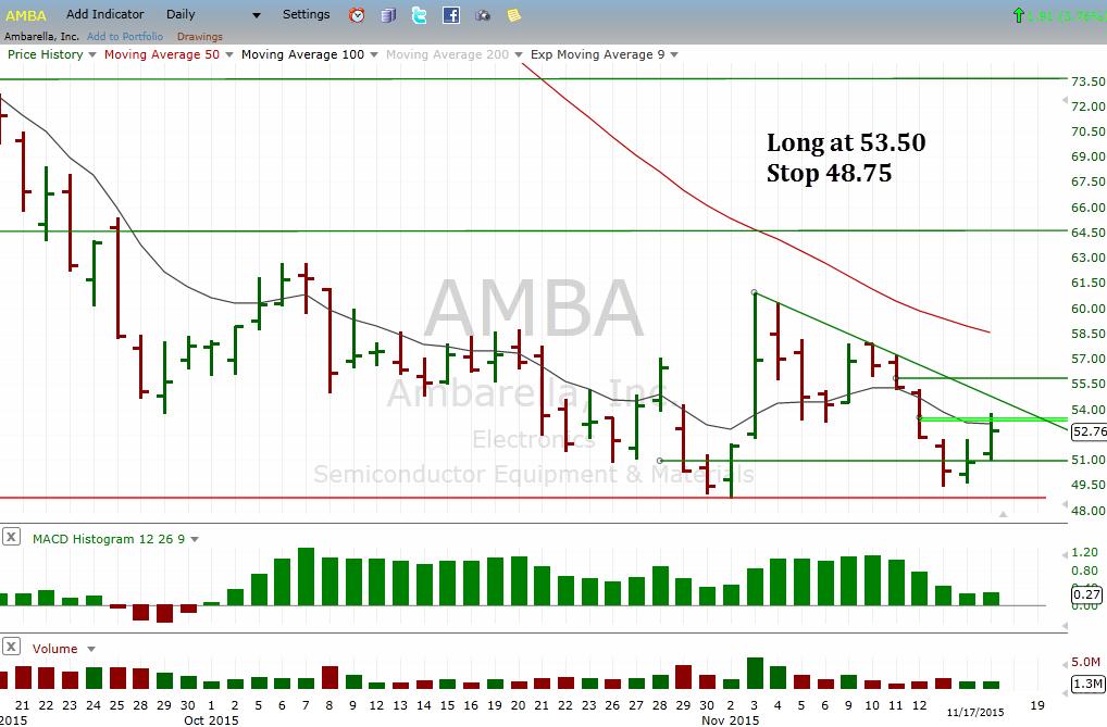 AMBA_D_11172015